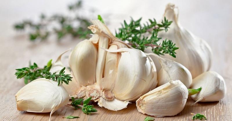 Top 29 Loại thực phẩm tốt cho hoạt động của Thận