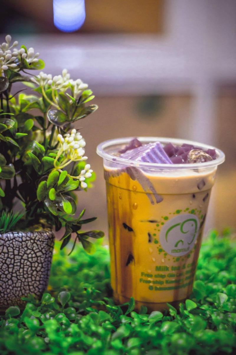 Top 8 Quán bán trà sữa ngon và chất lượng nhất TP. Pleiku, Gia Lai