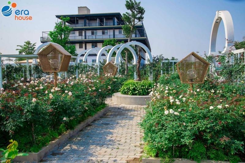 Top 5 Nông trại giáo dục hot nhất Hà Nội