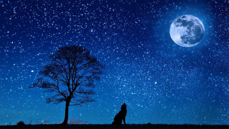 Top 8 Hiện tượng thiên văn kì thú nhất