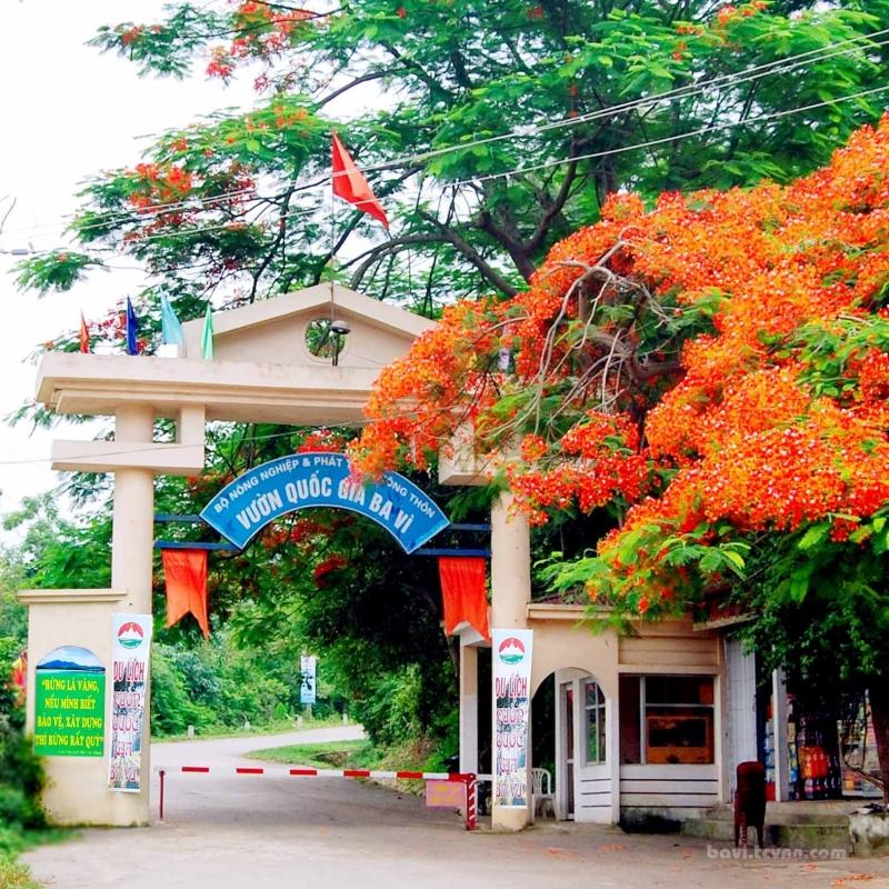 Top 10 địa điểm du lịch đẹp và tiết kiệm nhất gần Hà Nội