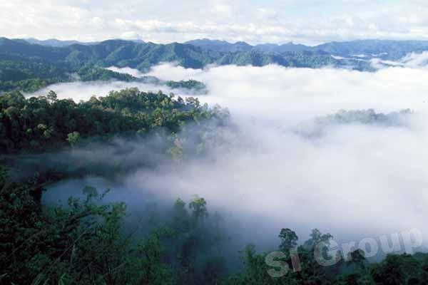 Top 9 Vườn quốc gia đẹp nhất Thái Lan