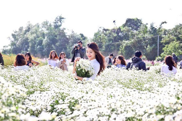 Bãi đá sông Hồng - điểm chụp ảnh hấp dẫn nhất tại Hà Nội