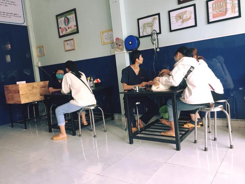 Top 5 Phòng khám thú y uy tín nhất tại Quảng Ngãi