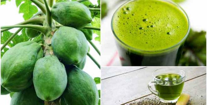 Cách chữa bệnh gout bằng đu đủ xanh và trà xanh