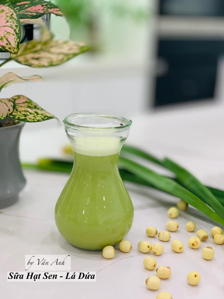 Top 10 Cách chế biến các loại sữa hạt sen thơm ngon, bổ dưỡng nhất