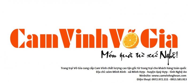 Top 4 Trang trại cam ngon nổi tiếng nhất tại Nghệ An