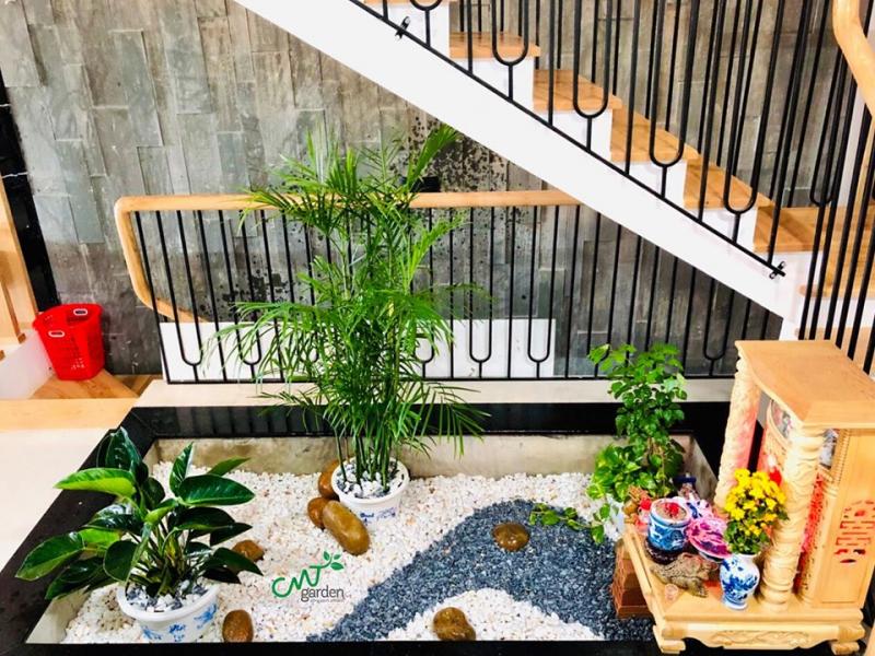 Top 9 Địa chỉ bán cây xanh trang trí tạo không gian xanh mát tại Đà Nẵng