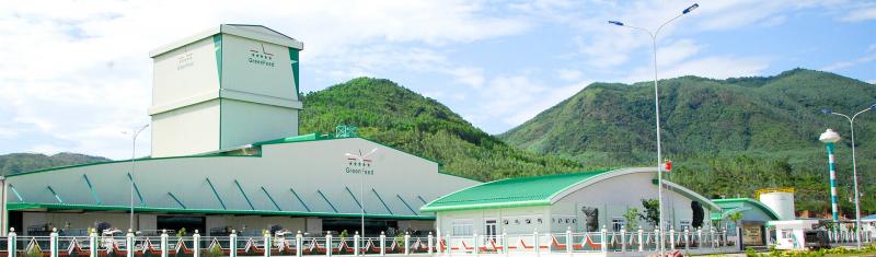 Top 6 Công ty sản xuất thức ăn gia súc chất lượng nhất tỉnh Bình Định