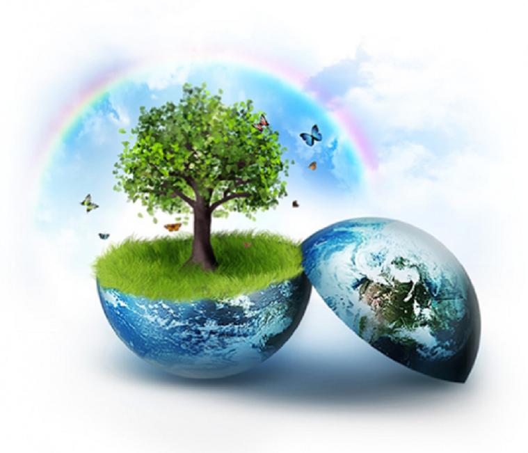 Top 10 Dịch vụ tư vấn môi trường chuyên nghiệp tại Đà Nẵng