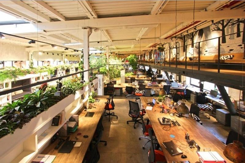 Thiết kế thi công nội thất văn phòng gần gũi thiên nhiên