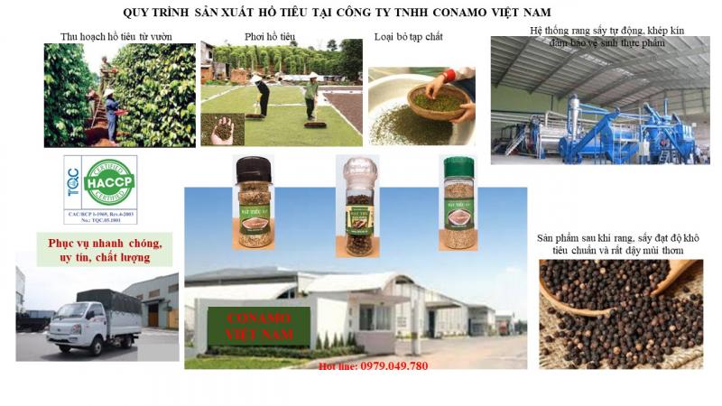 Công ty TNHH Conamo Việt Nam