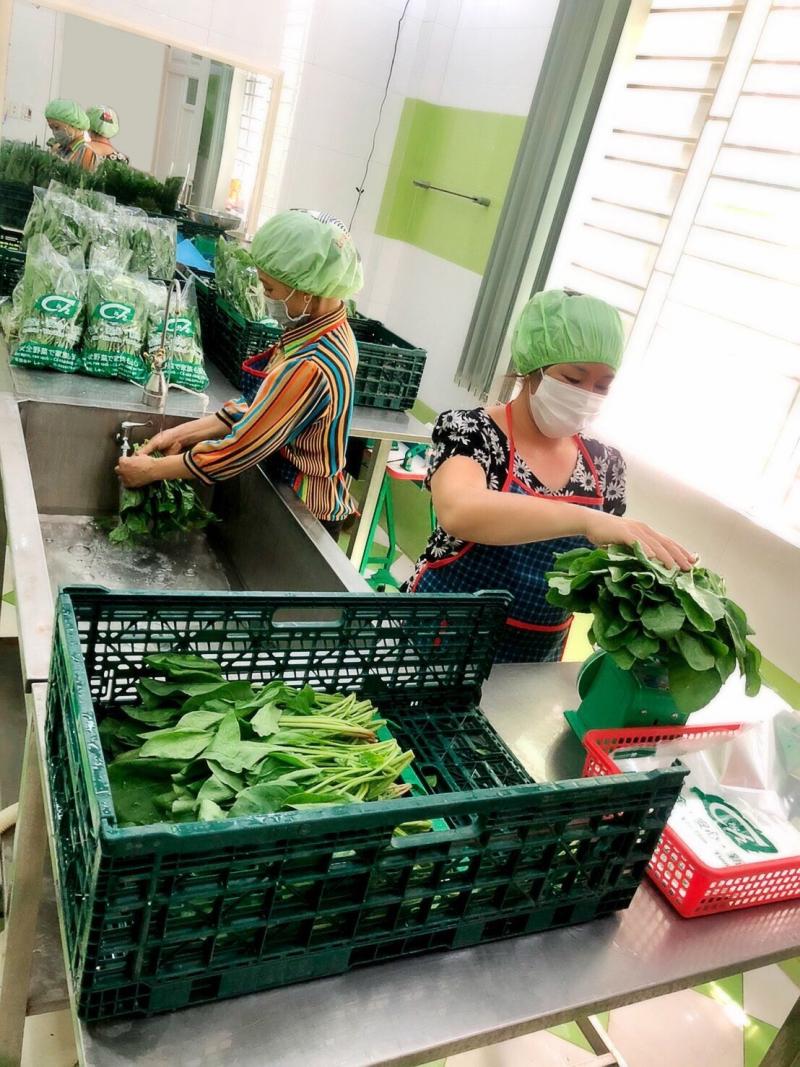 Công ty TNHH Syun Việt Nam