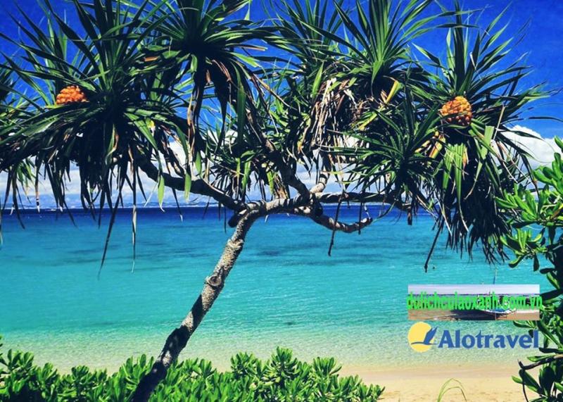 Điểm đến trong tour của Alo Travel
