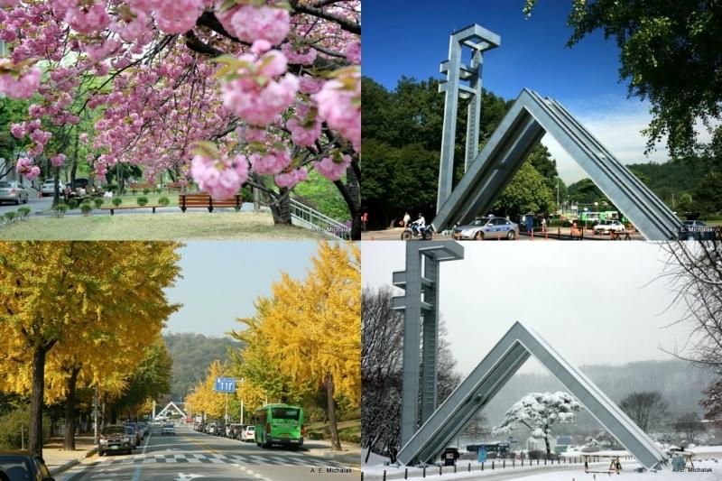 Khung cảnh bốn mùa tuyệt đẹp tại Đại học Quốc gia Seoul