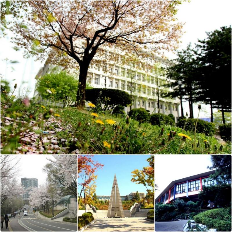 Những hình ảnh tuyệt đẹp tại Đại học Sogang