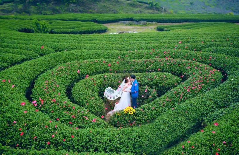 Top 13 Địa diểm chụp ảnh cưới đẹp và lãng mạn nhất tại Mộc Châu