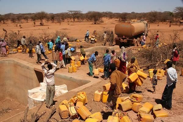 Hạn hán Đông Phi 2011