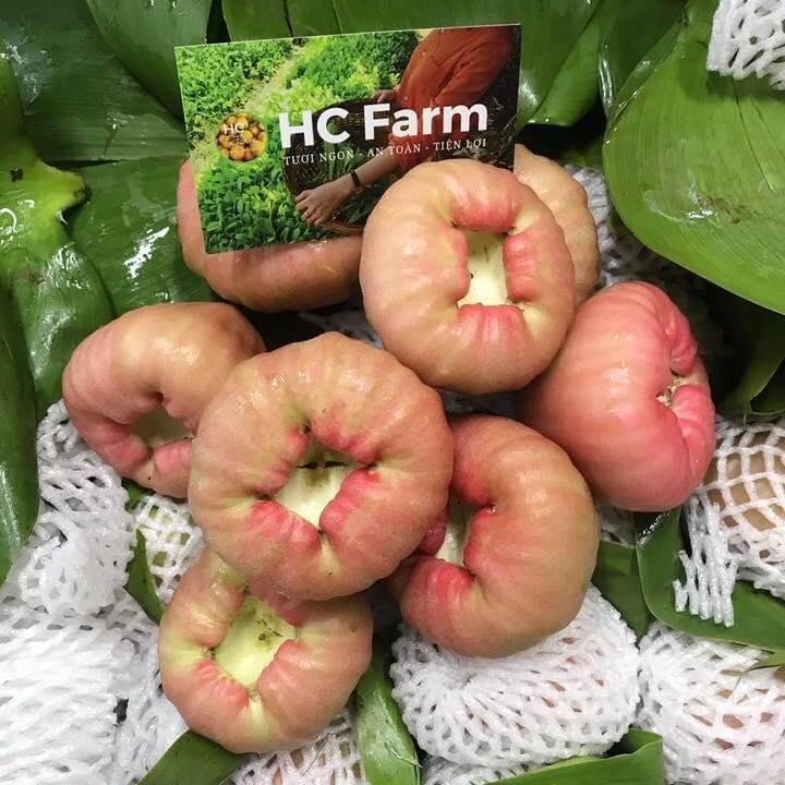 HC Farm - Thực phẩm Tự nhiên & Đặc sản Vùng miền