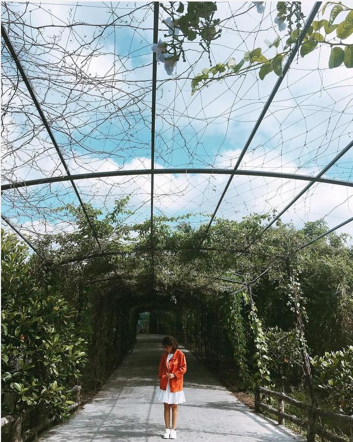 Khuôn viên vườn rộng, thoáng đãng giúp du lịch Mỹ Khánh  một nơi dừng chân yêu thích của Du khách tại Cần Thơ
