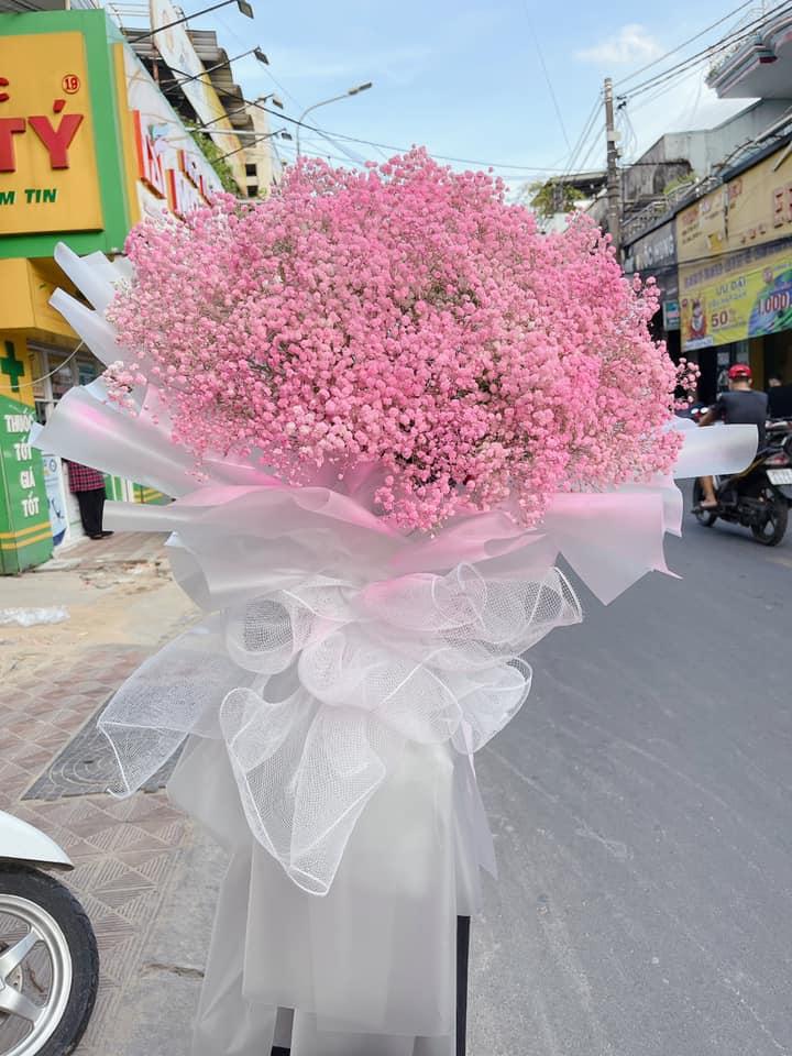 Kinh Đô Hoa