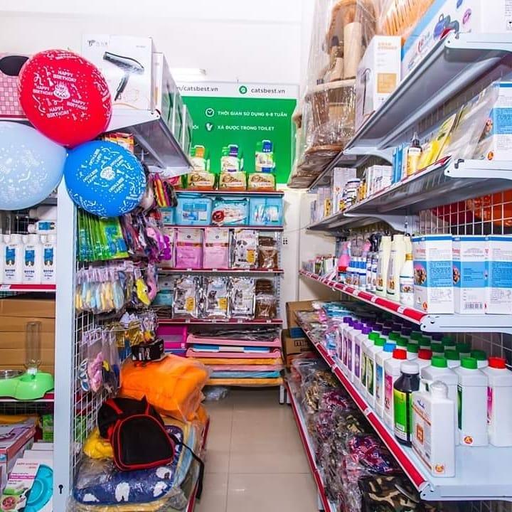 Top 6 Cửa hàng bán thú cưng uy tín ở Đà Nẵng