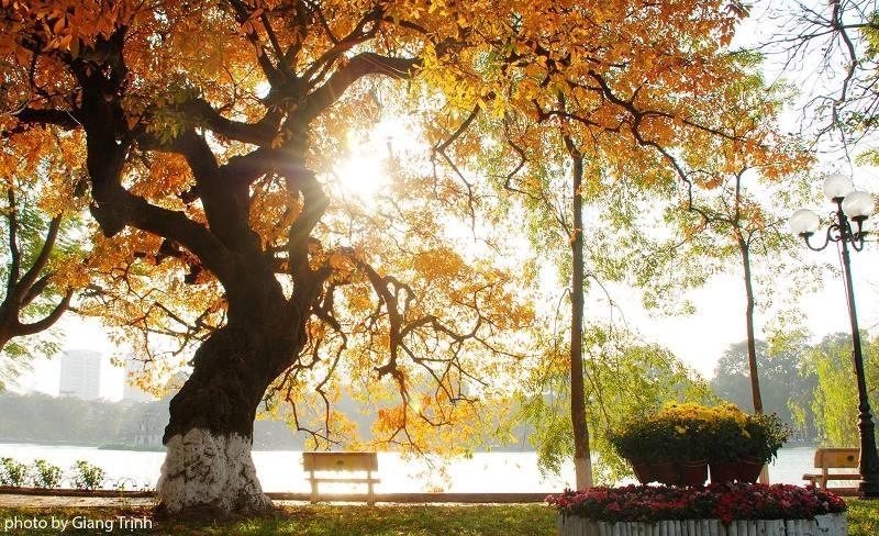 Nắng mùa thu trong vắt, đẹp mơ màng