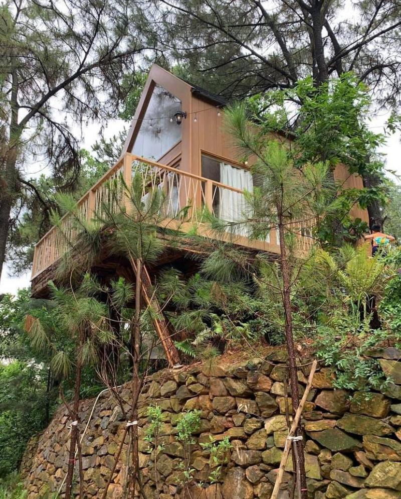 Nhà bên rừng - U Lesa