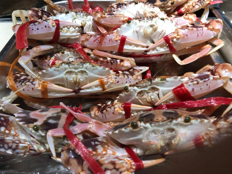 Nhà Hàng Dedi Deli BBQ Buffet là cả một thiên đường hải sản dành đến cho khách hàng lựa chọn