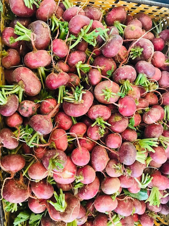 Organica Đà Nẵng