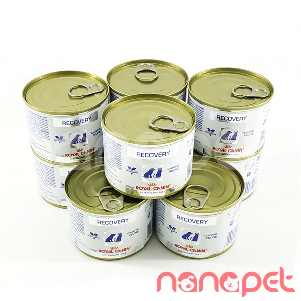 Pate Royal Canin – Recovery