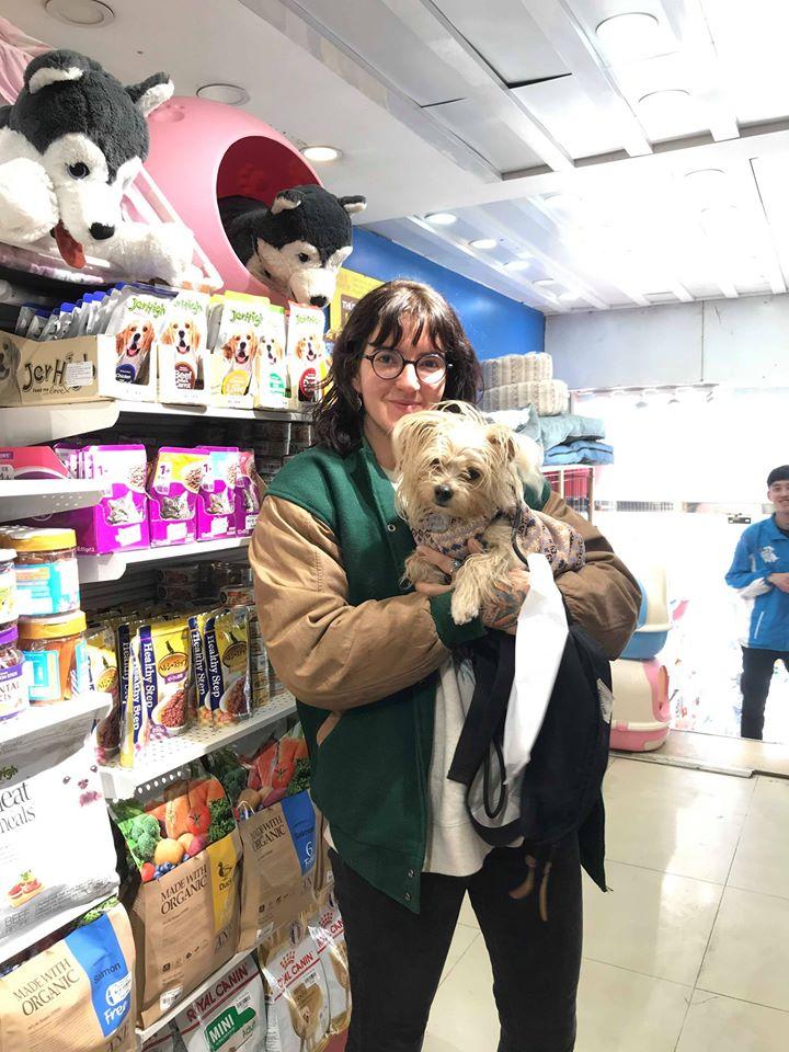 Top 5 Shop bán phụ kiện, đồ chơi, thức ăn cho chó mèo quận Hoàn Kiếm, Hà Nội