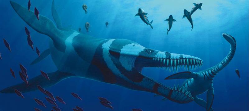 Predator X - Pliosaurs