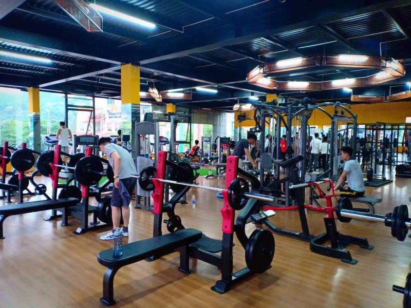 Royal Fitness Lào Cai