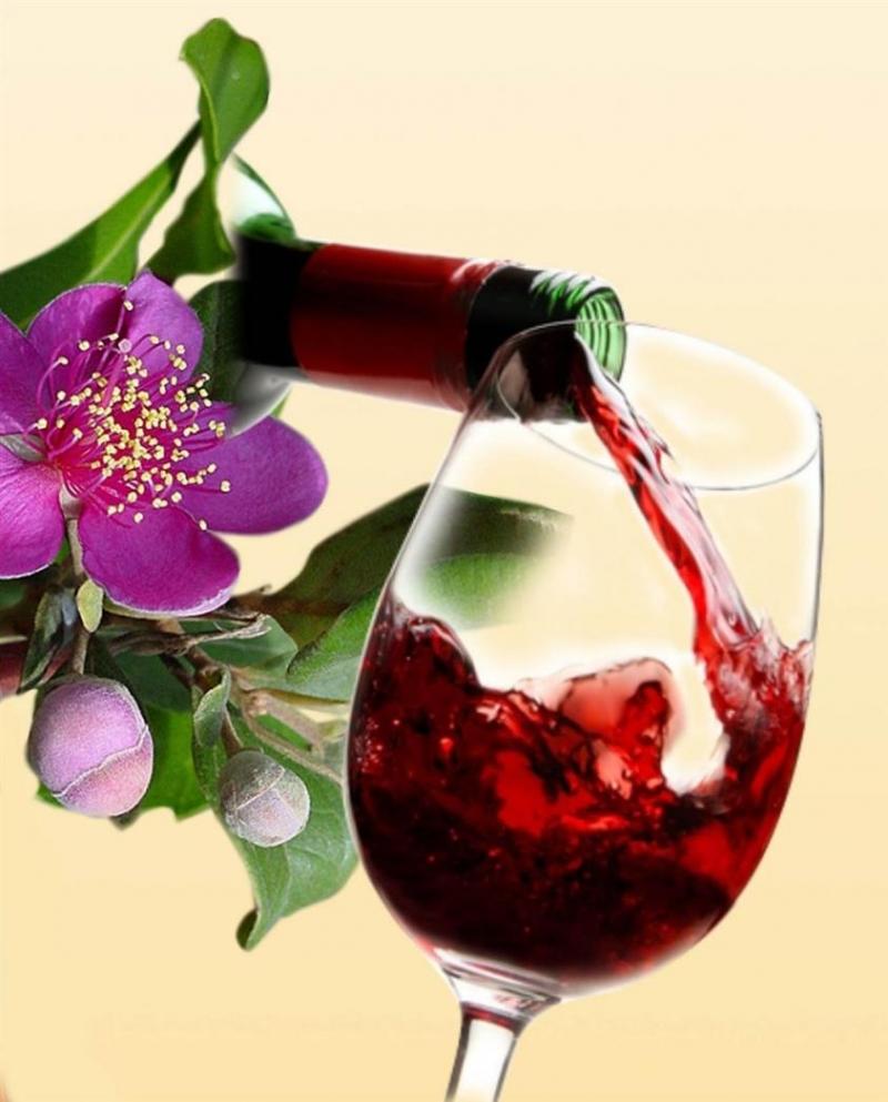 Rượu vang Đa Lộc - địa chỉ mua rượu vang uy tín nhất Hà Nội
