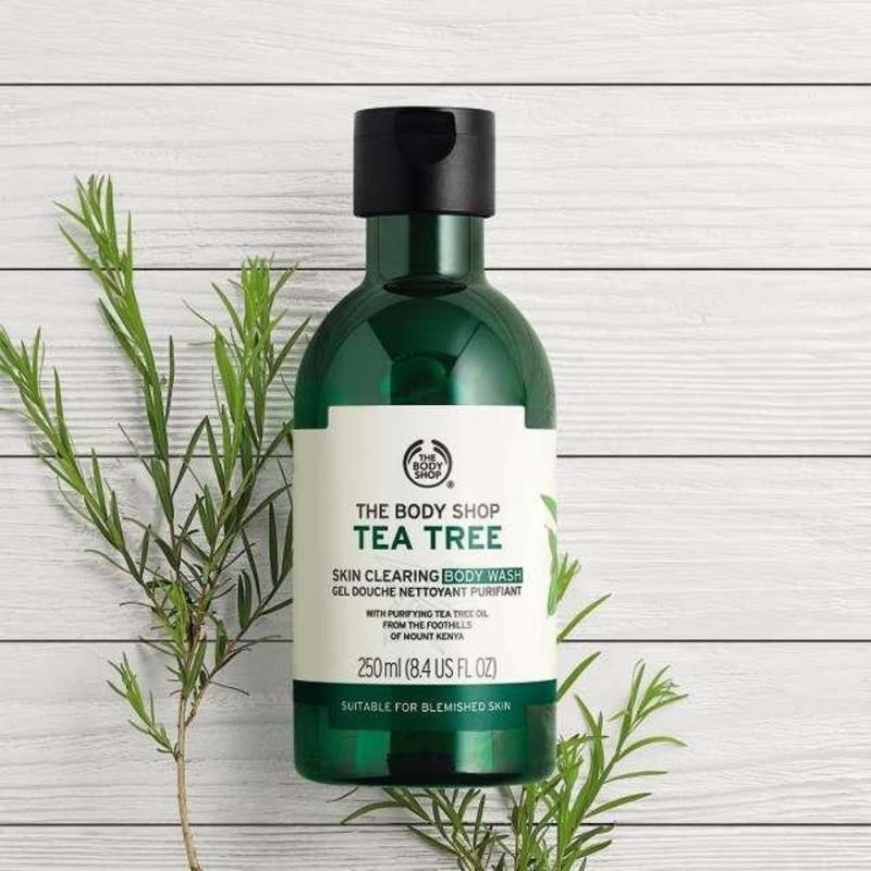 Sữa tắm Tea Tree Body Wash sảng khoái và không tạo bọt giúp chống khuẩn, trị mụn viêm hiệu quả cao