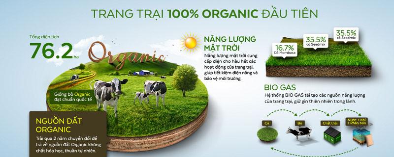 Sữa tươi Vinamilk Organic