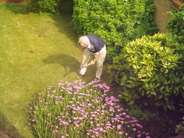 Thợ làm vườn