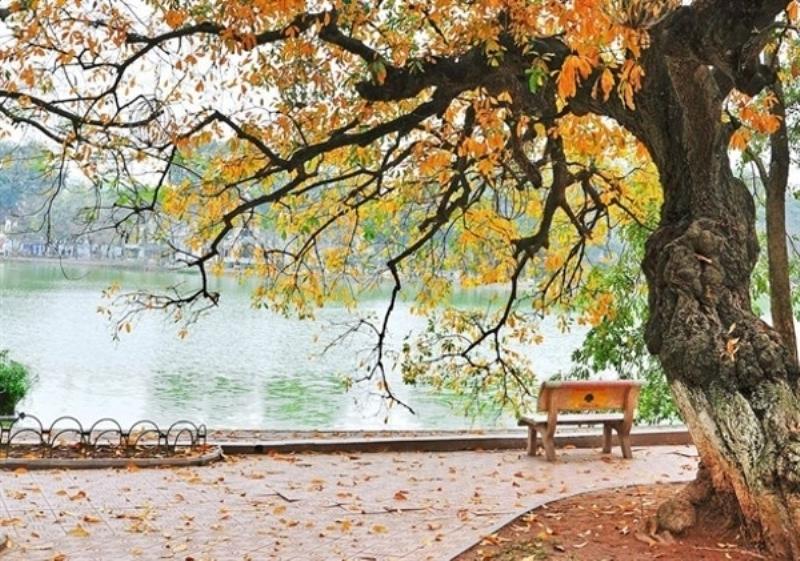 Thu Hà Nội, mùa thu của những miền cảm xúc miên man và mơ hồ khó có thể tả