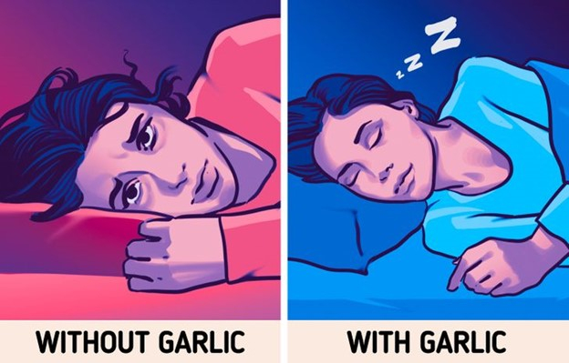 Tỏi giúp bạn ngủ ngon hơn