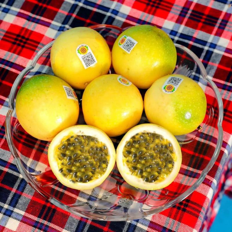 Suboy Foods