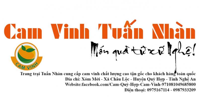 Trang Trại Cam Quỳ Hợp - Cam Vinh Tuấn Nhàn