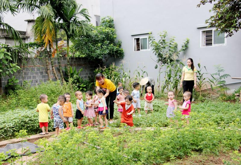 Top 10 Trường mầm non tốt nhất tại tỉnh Thái Bình