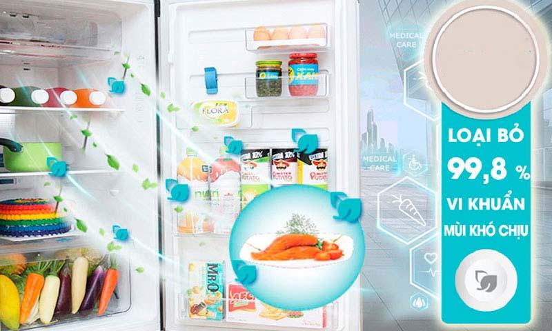 Tủ lạnh NutriFresh® Inverter ngăn đá dưới 250 lít EBB2802H-A