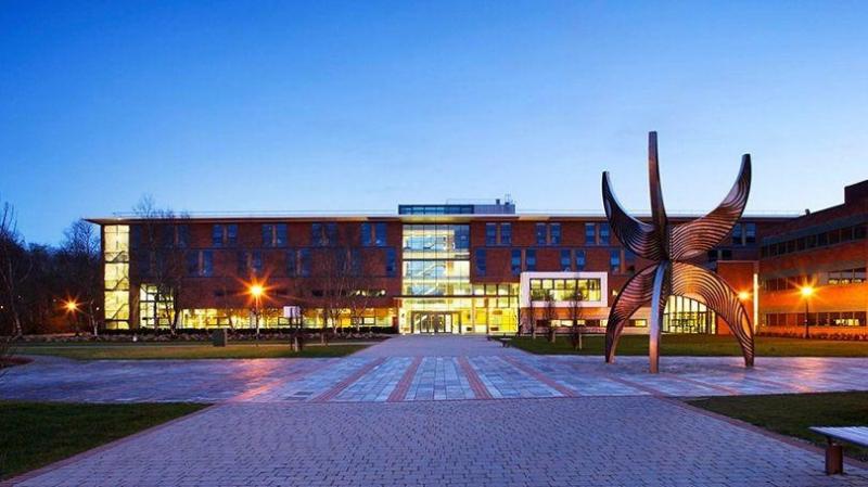 Trường University of Limerick