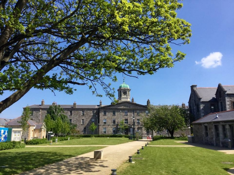 Viện công nghệ Dublin