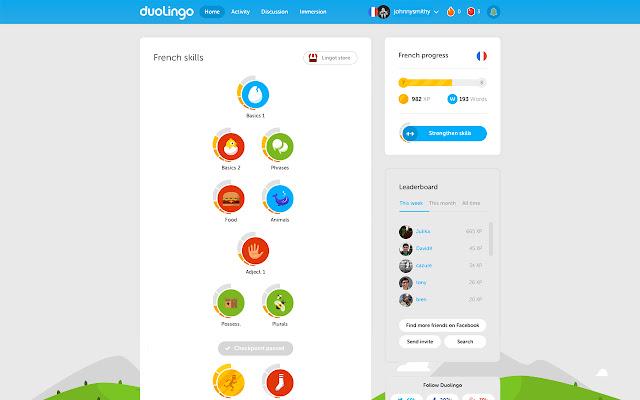 Website: Duolingo