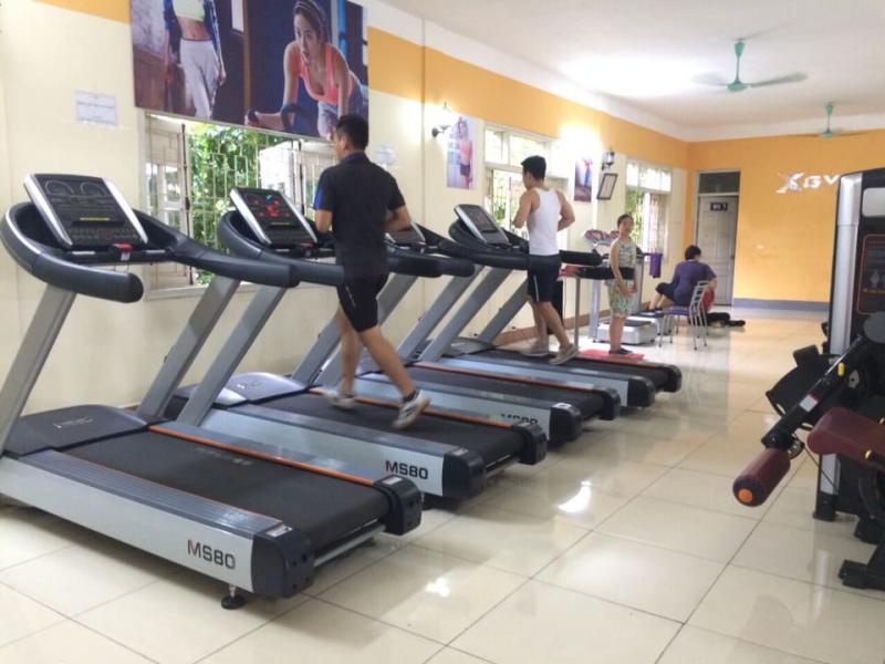 XGym CHV Việt Trì