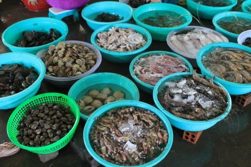 Top 8 Địa chỉ mua hải sản giá rẻ và uy tín nhất tại tỉnh Quảng Ninh