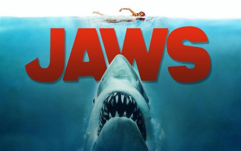 Top 6 Bộ phim về Cá mập siêu gay cấn mà bạn không nên bỏ lỡ